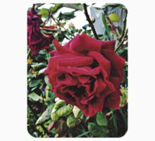 Red Roses Springtime in the Garden Baby Tee