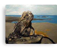 Marine Iguana Canvas Print