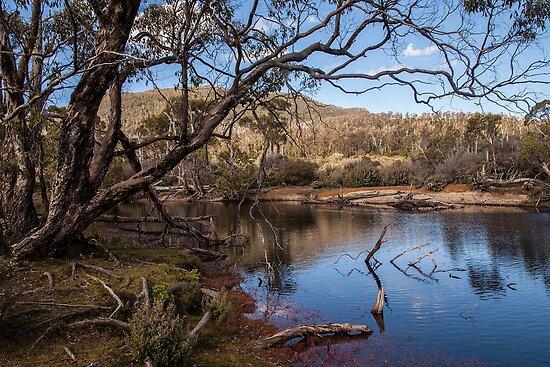 Narcissis River - Overland track Tasmania by Ron Finkel