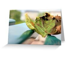 Olive Green Greeting Card