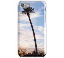 The evening sky iPhone Case/Skin