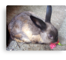 Happy Easter! from Blueberry Bunny Metal Print