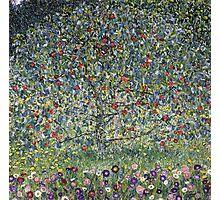Gustav Klimt - Apple Tree I Photographic Print