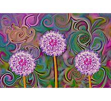 Dandelion Swirl - Abstract Photographic Print