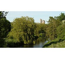 Willow Over The Eden Photographic Print