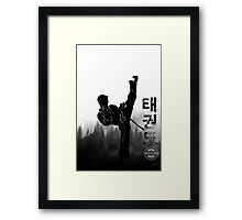 Taekwondo Korean High Kick Framed Print
