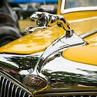 Ford Greyhound Hood Ornament - Chrome by Mike Koenig