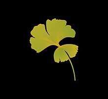 Ginkgo Leaves II by the-novice