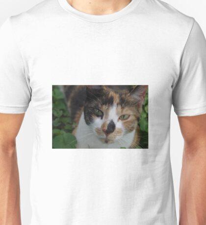 Sweet calico cat Unisex T-Shirt