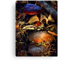 Fairy's Leather Furniture Canvas Print