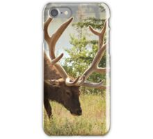 Elk at the River iPhone Case/Skin