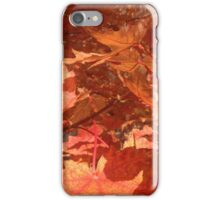 Autumn In Minnesota  If you like, please purchase an item, thanks iPhone Case/Skin
