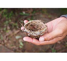 Tiny Nest Photographic Print