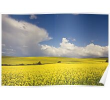 Countryside landscape Poster
