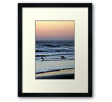 Sunset Birds Framed Print