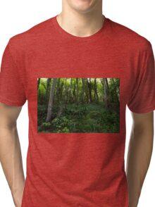 Plant Lorn Slope Tri-blend T-Shirt