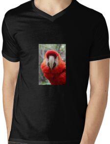 Scarlet Macaw Mens V-Neck T-Shirt