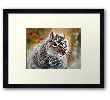 Wild Expedition Framed Print