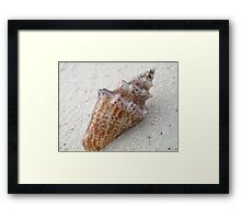 Nature's mobile home Framed Print