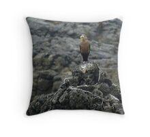 Bird Eating a Cricket Throw Pillow