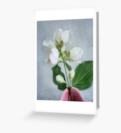 Orange Blossom Time Greeting Card