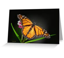 Open Wings Monarch Butterfly Greeting Card