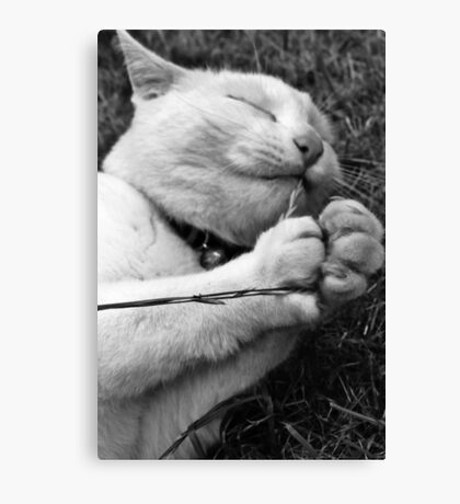 Simple Pleasures (BW) Canvas Print