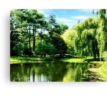 Willow By the Lake Canvas Print