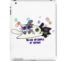 You Are My Bundle Of Kittens iPad Case/Skin
