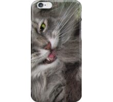 Demented Kitty iPhone Case/Skin