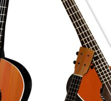Acoustic instruments Sticker