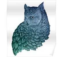 Ombre Owl II Poster