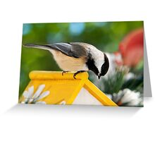 Spring Chickadee Greeting Card