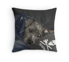CLEO the puppy on a pillow TWO Throw Pillow