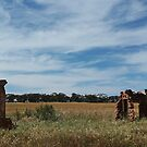 Ruins at New Norcia by myraj