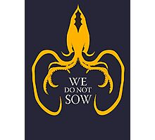 We do not sow - White Ed Photographic Print