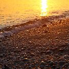 Beach Pebbles | East Marion, New York by © Sophie W. Smith