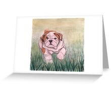 English Bulldog-scroll down to view more of my work Greeting Card