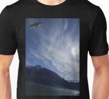 Vincent van Gogh Sky Glacier Bay Alaska Unisex T-Shirt