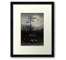Dark Fox Framed Print