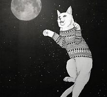 Cat trying to catch the Moon. by barruf