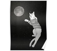 Cat trying to catch the Moon. Poster