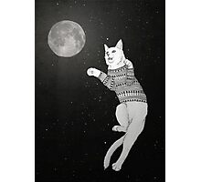 Cat trying to catch the Moon. Photographic Print