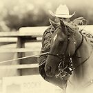 The Cowboy Way by Bob Christopher