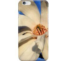 White Saucer Magnolia iPhone Case/Skin