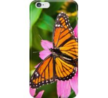 Orange Viceroy Butterfly iPhone Case/Skin