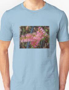 Pink Callistamon  T-Shirt