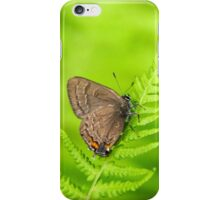Banded Hairstreak Butterfly iPhone Case/Skin