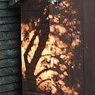 Shadows On The Shed by CreativeEm