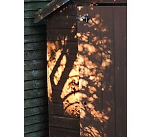 Shadows On The Shed Photographic Print